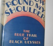 Rainbow Round My Shoulder – Howard Odum – 1928