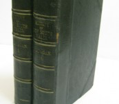 The History of New South Wales – Flanagan, Roderick 1862 – 2 Volumes