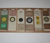 Important Victorian Microscope Slide Collection – H.M.S. Challenger Expedition