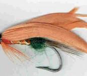 Orange Parson – Salmon Fly