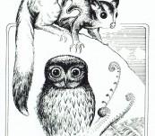 Blake Twigden Bookplate – the Owl and the Possum – Ex Libris Pat Corrigan