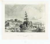 "Hobart Botanical Gardens -1840 Jardin Botanique D'Hobart-Town – Original Lithograph from the Voyage of Dumont d""Urville"