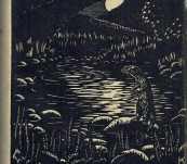 Tarka the Otter – Henry Williamson – 1929 Edition