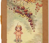Boronia Babies – May Gibbs – First Edition -1919