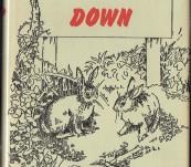Watership Down – Richard Adams – First Australian Edition 1974 – A Fine Copy