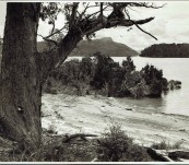 Photograph by B Sheppard, Tasmania Mount Olympus and Lake Sinclair Tasmania