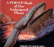 Global Warning – A Pop-Up Book of Our Endangered Planet – Sandy Ransford