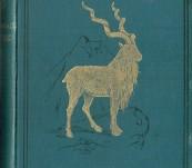 Hindu-Koh – Wanderings and Wild Sport on and Beyond the Himalayas  – Major General Donald Macintyre.– 1891