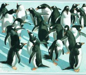 Wildlife and Wilderness – An Artist's World – Keith Shackleton